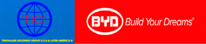 BYD FACE MASK   |Auth-Seller|